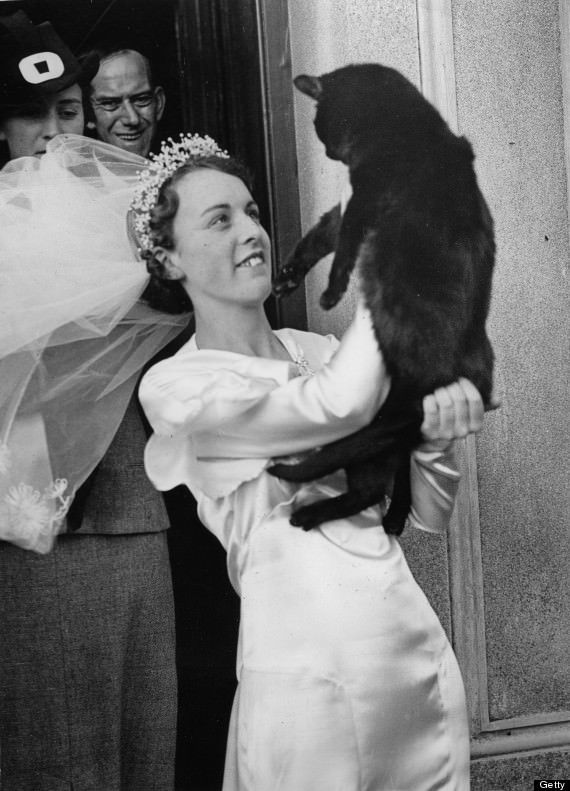 A bride with her black cat. It's a lucky charm for the matrimony. Photograph. Around 1935.